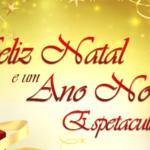 Felin natal-e-ano-novo